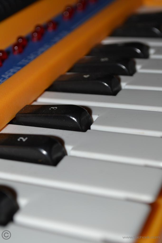 Tandy_electrorange_Organ