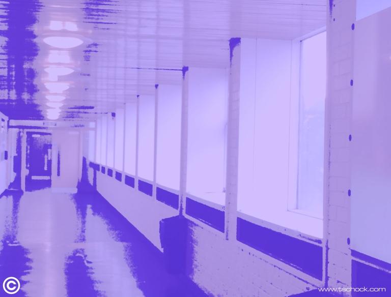 purplecovsports